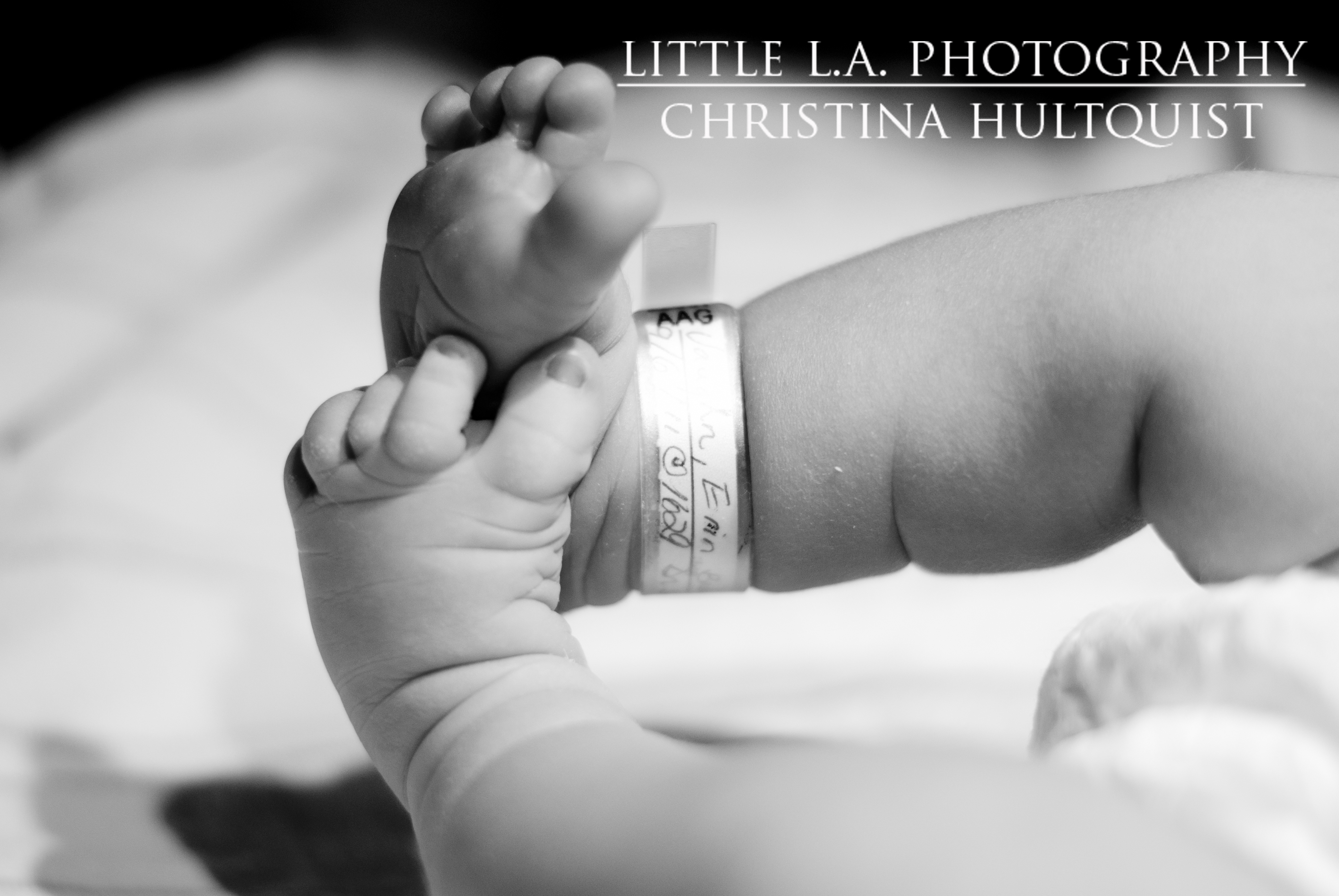 baby feet photography los angeles