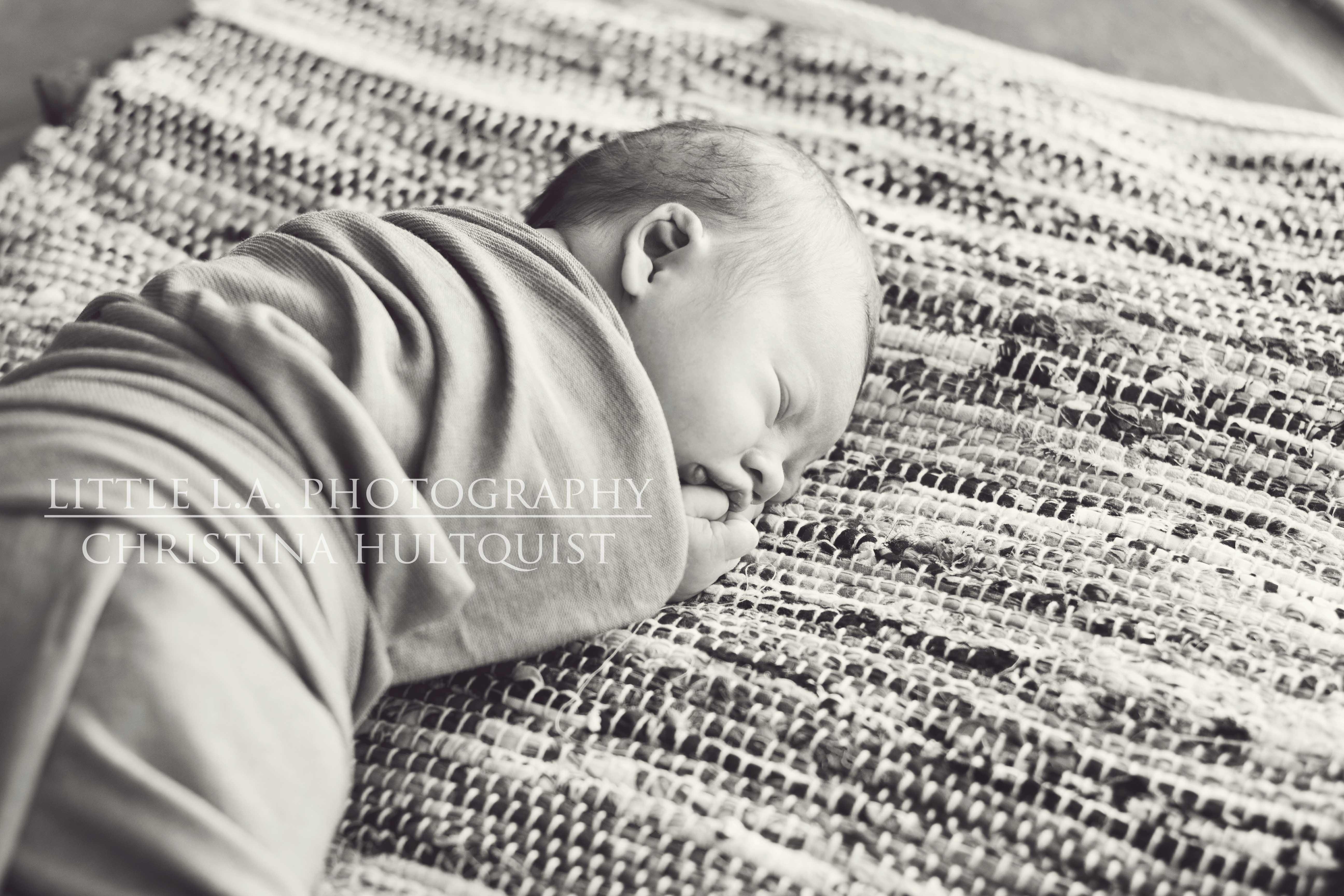 la newborn photography